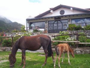 Casa En Ventaen Merida, La Culata, Venezuela, VE RAH: 21-3304