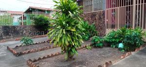 Casa En Ventaen Acarigua, Centro, Venezuela, VE RAH: 21-4289