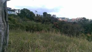 Terreno En Ventaen Caracas, La Trinidad, Venezuela, VE RAH: 21-4569