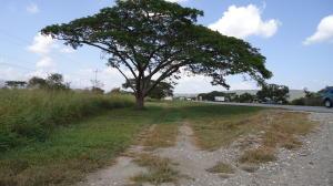 Terreno En Ventaen Yaritagua, Municipio Peña, Venezuela, VE RAH: 21-5547
