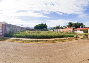 Terreno En Ventaen Coro, Centro, Venezuela, VE RAH: 21-6932
