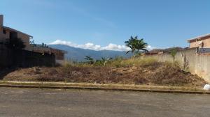 Terreno En Ventaen Valencia, Altos De Guataparo, Venezuela, VE RAH: 21-8985