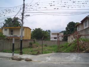 Terreno En Ventaen Maracay, El Limon, Venezuela, VE RAH: 21-9662