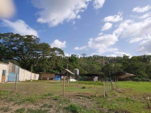 Terreno En Ventaen Municipio Carlos Arvelo, Guigue, Venezuela, VE RAH: 21-9941