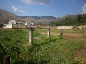 Terreno En Ventaen Municipio San Diego, La Cumaca, Venezuela, VE RAH: 21-9949