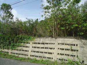 Terreno En Ventaen El Junquito-Vargas, El Junko Country Club, Venezuela, VE RAH: 21-10004