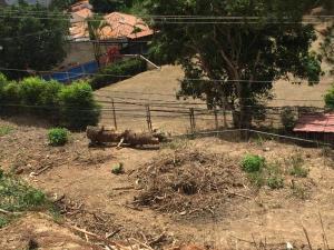 Terreno En Ventaen Caracas, Caicaguana, Venezuela, VE RAH: 21-10709