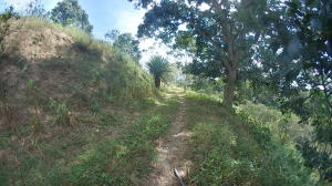Terreno En Ventaen Municipio Montalban, Los Cerritos, Venezuela, VE RAH: 21-10777