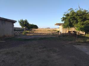 Terreno En Ventaen Coro, Monseñor Iturriza, Venezuela, VE RAH: 21-10973