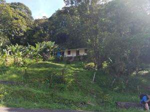 Terreno En Ventaen Sierra De Falcon, Curimagua, Venezuela, VE RAH: 21-11001