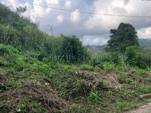 Terreno En Ventaen Caracas, Caicaguana, Venezuela, VE RAH: 21-9034