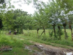 Terreno En Ventaen San Felipe, San Felipe, Venezuela, VE RAH: 21-11401