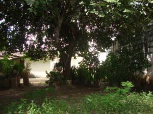 Terreno En Ventaen Cabudare, Parroquia Cabudare, Venezuela, VE RAH: 21-11581