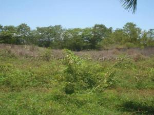 Terreno En Ventaen Higuerote, Ciudad Balneario Higuerote, Venezuela, VE RAH: 21-11956