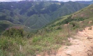 Terreno En Ventaen Caracas, Caicaguana, Venezuela, VE RAH: 21-12347