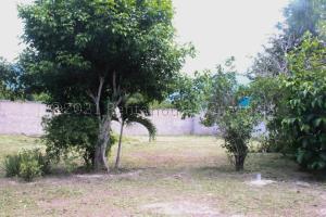 Terreno En Ventaen Municipio Del Sol, El Playon, Venezuela, VE RAH: 21-12832