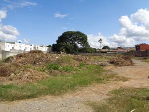 Terreno En Ventaen Cabudare, La Piedad Norte, Venezuela, VE RAH: 21-13371