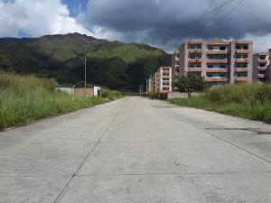 Terreno En Ventaen Municipio San Diego, Monteserino, Venezuela, VE RAH: 21-13892