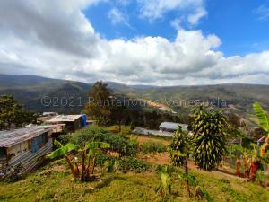 Terreno En Ventaen San Pedro De Los Altos, Los Garabatos, Venezuela, VE RAH: 21-14291