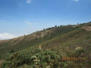 Terreno En Ventaen Caracas, El Junko, Venezuela, VE RAH: 21-14968