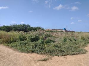 Terreno En Ventaen Punto Fijo, Guanadito, Venezuela, VE RAH: 21-15579