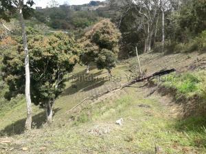 Terreno En Ventaen Caracas, Oripoto, Venezuela, VE RAH: 21-16488
