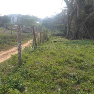 Terreno En Ventaen Municipio Urdaneta, Santa Lucia, Venezuela, VE RAH: 21-16932