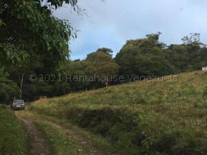 Terreno En Ventaen Bocono, Via Bocono, Venezuela, VE RAH: 21-17458