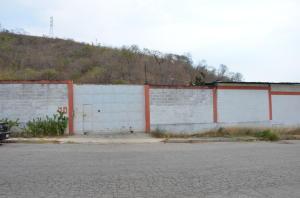 Terreno En Alquileren Municipio San Diego, Castillito, Venezuela, VE RAH: 21-18854