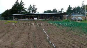 Terreno En Ventaen Lagunillas, Las Gonzales, Venezuela, VE RAH: 21-21295