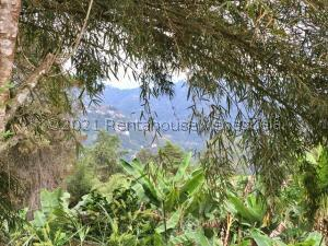 Terreno En Ventaen Caracas, Oripoto, Venezuela, VE RAH: 21-21843