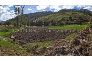 Terreno En Ventaen Merida, Mucuruba, Venezuela, VE RAH: 21-26261