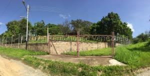 Terreno En Ventaen Villa De Cura, Villa Virginia, Venezuela, VE RAH: 21-26904