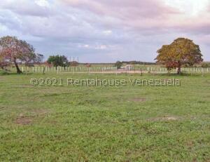 Terreno En Ventaen Barlovento, Municipio Capaya, Venezuela, VE RAH: 21-27171