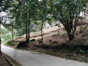 Terreno En Ventaen La Colonia Tovar, La Colonia Tovar, Venezuela, VE RAH: 21-27932