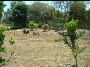 Terreno En Ventaen Municipio Montalban, Aguirre, Venezuela, VE RAH: 22-995