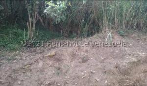 Terreno En Ventaen San Pedro De Los Altos, Los Garabatos, Venezuela, VE RAH: 22-1723