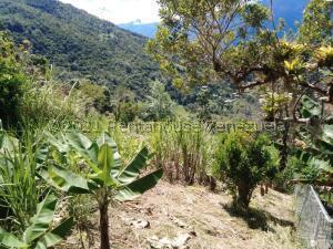 Terreno En Ventaen Merida, Avenida Los Proceres, Venezuela, VE RAH: 21-25207