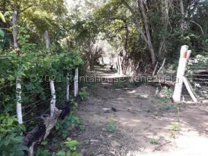 Terreno En Ventaen Sierra De Falcon, Cabure, Venezuela, VE RAH: 22-2849