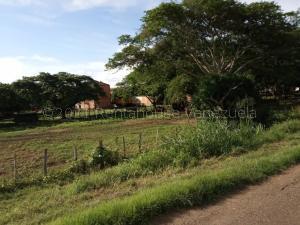 Negocios Y Empresas En Ventaen El Sombrero, Sector Carrizal, Venezuela, VE RAH: 22-3806