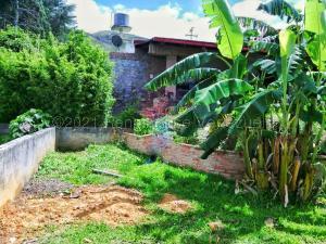 Terreno En Ventaen El Junquito-Vargas, La Niebla, Venezuela, VE RAH: 22-5673