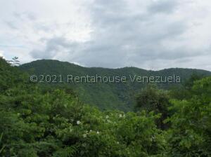 Terreno En Ventaen Caracas, Caicaguana, Venezuela, VE RAH: 22-6562