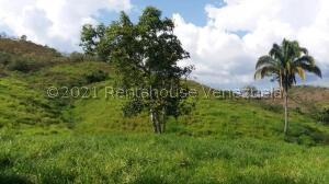 Terreno En Ventaen Tinaquillo, Tinaquillo, Venezuela, VE RAH: 22-6016