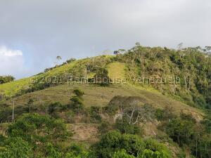 Terreno En Ventaen Tovar, San Jose, Venezuela, VE RAH: 22-7043