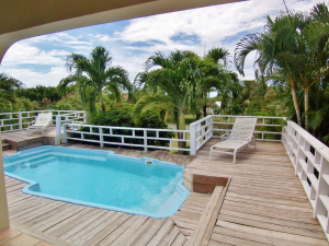 Mature tropical palms serve to keep the pool, deck and gallery private while providing tropical flair!