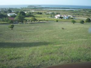 13 Southgate Farm EA,