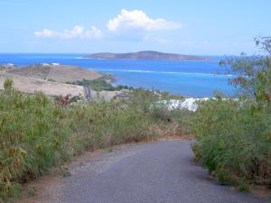 Buck Island View