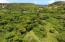 Montpellier PR, St. Croix,