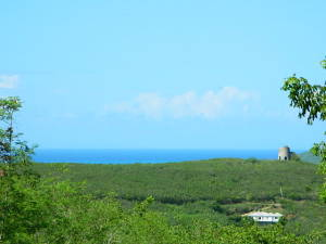 View of Sea and Sugar Mill. Country living on the East End. Near Pony Club.