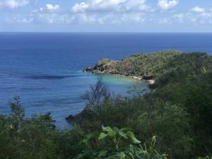 Stumpy Bay